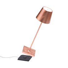 Ai Lati Poldina Pro Table lamp Battery table lamp